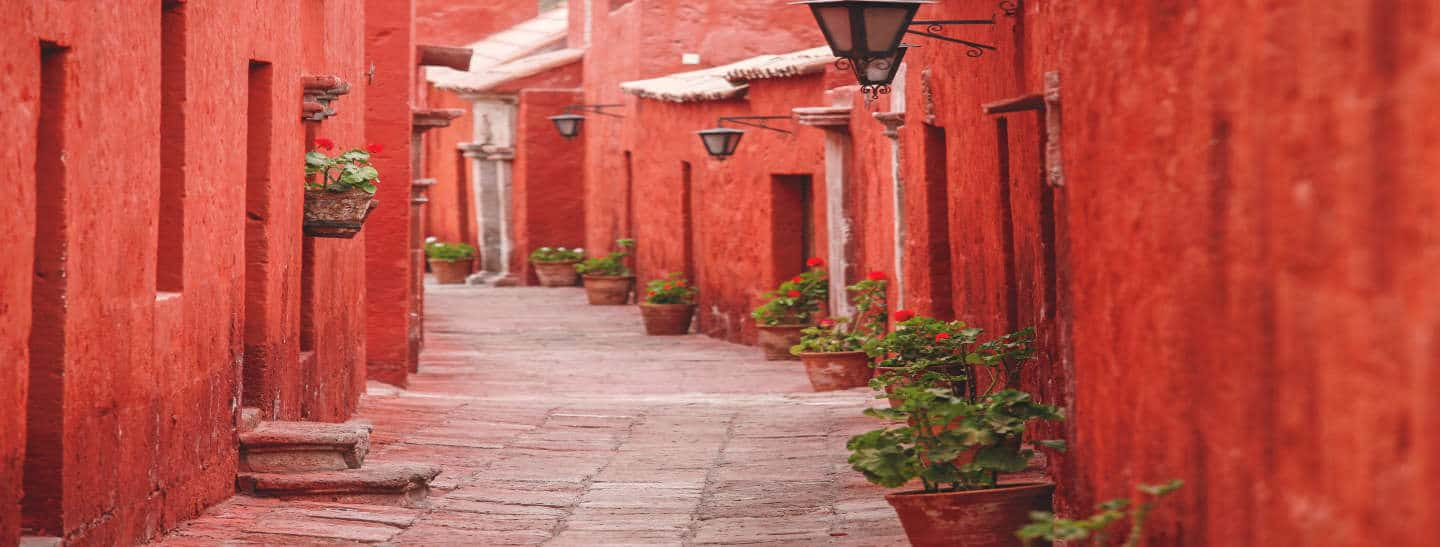 Street of the Santa Catalina Monastery. Walls painted red and is lined with pots with green plants.
